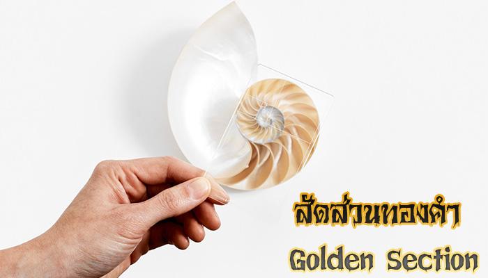 สัดส่วนทองคำ